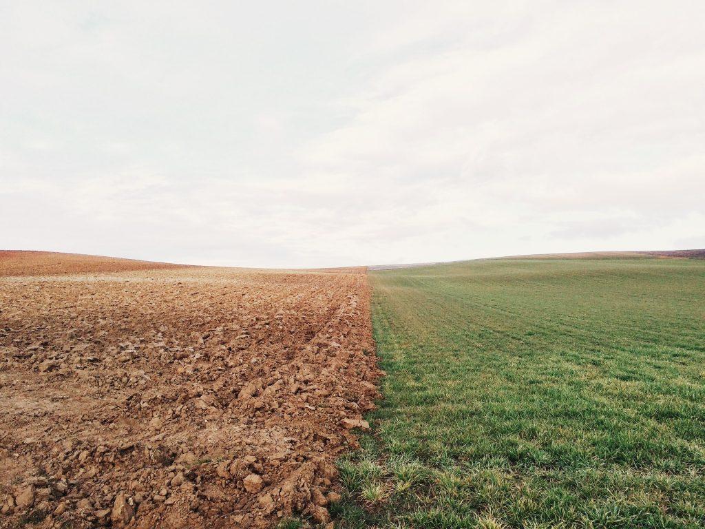 zasiedzenie nieruchomosci rolnej